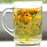 Лесные травы в стакане с кипятком